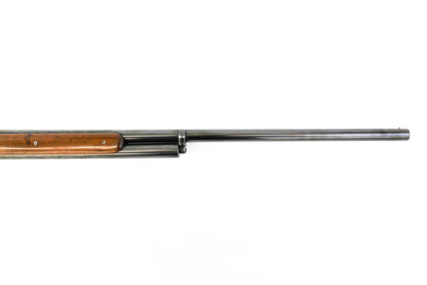 Winchester 1901 Other